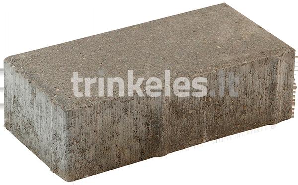 GT 2-6 200x100x60 6 cm trinkelė betono